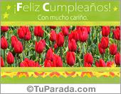 Tarjeta de cumpleaños con tulipanes