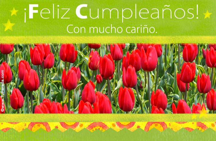 Tarjeta - Tarjeta de cumpleaños con tulipanes