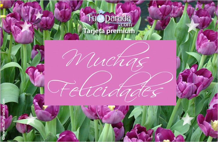 Tarjeta - Felicidades con tulipanes lilas