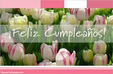 Tarjeta con tulipanes blancos