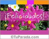 Tarjeta de felicidades con flores en lila y rosa