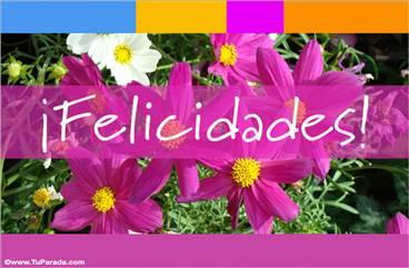 Felicidades con flores en lila y rosa