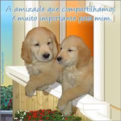 A amizade que compartilhamos ...