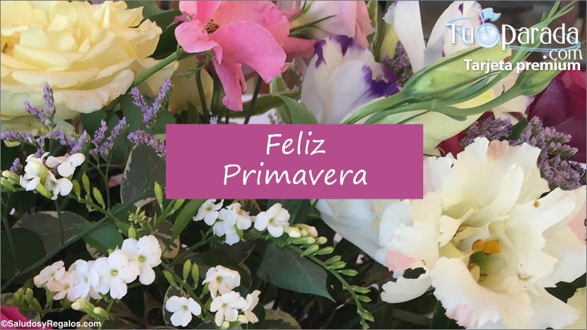 Tarjeta - Día de la Primavera con ramo de flores