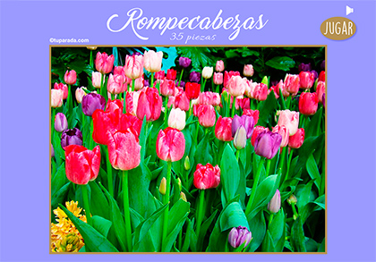 Rompecabezas - Flores