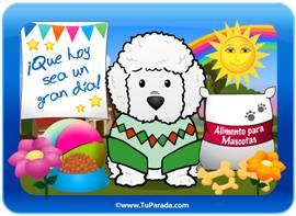 Tarjeta-juego: Perro Caniche Toy
