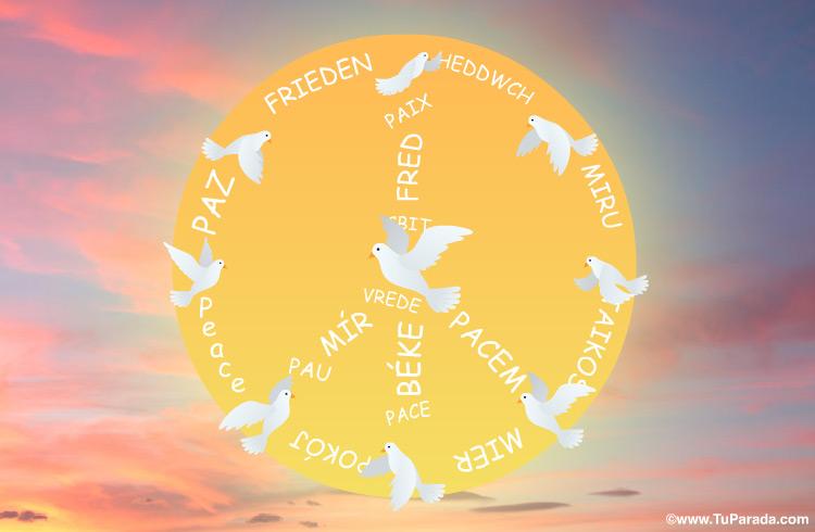 Tarjeta - Postal Paz con sol