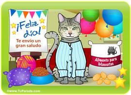 Tarjeta-juego: Gato de Angora