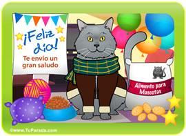 Tarjeta juego: Gato gris