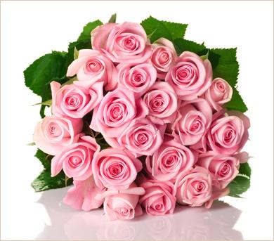 Gran ramo de veinticuatro rosas rosadas