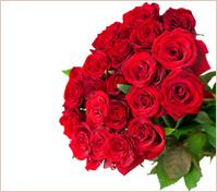 Veinticuatro rosas rojas en gran ramo