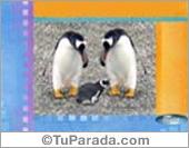 Pingüi