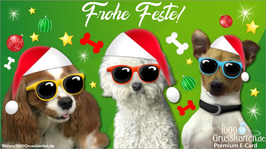 E-Card - Weihnachtskarte mit lustigen Hunden
