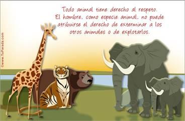 Tarjeta por los animales