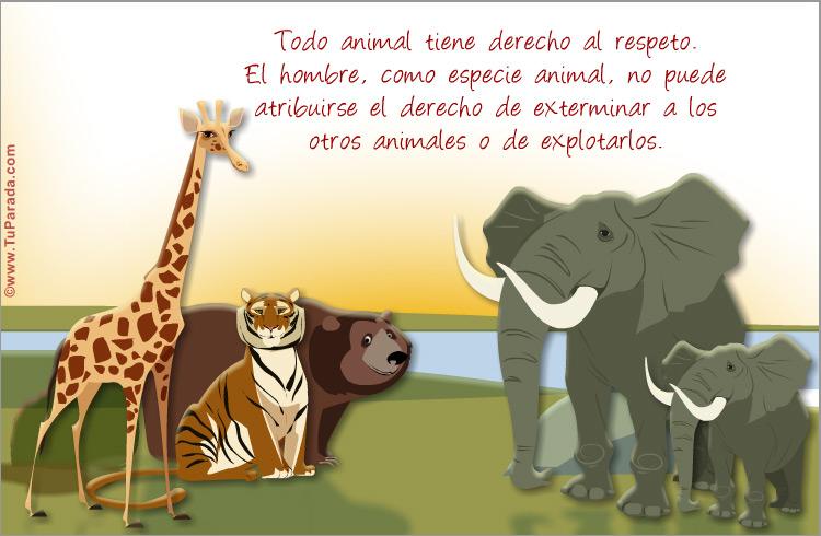 Tarjeta - Tarjeta por los animales