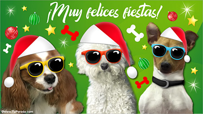 Tarjetas postales: Tarjeta con perritos navideños