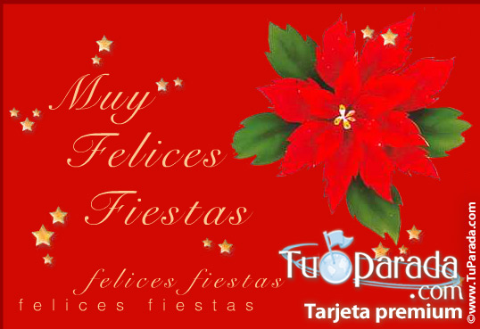 Tarjeta - Muchas felicidades con flor navideña