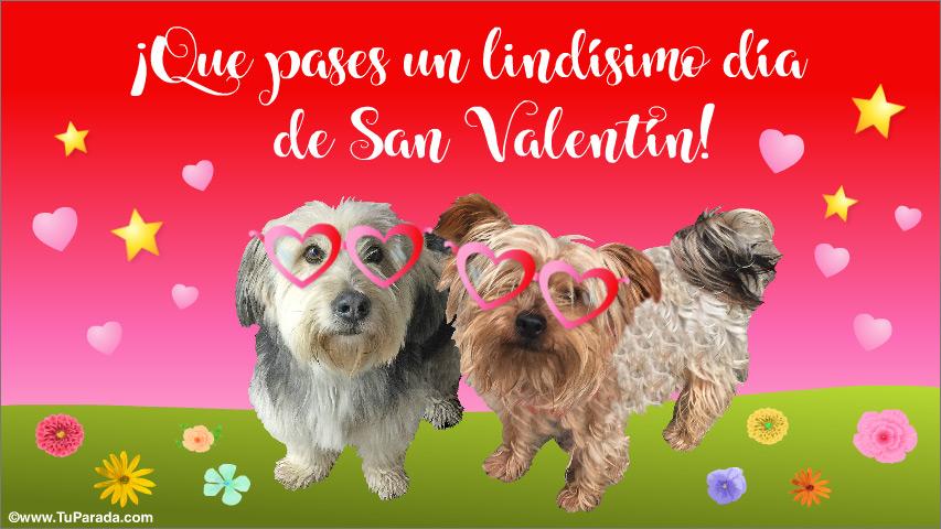 Tarjeta - Feliz San Valentín con perritos