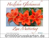 E-Card mit Blumenstrauß