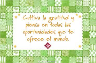 Cultiva la gratitud y las oportunidades