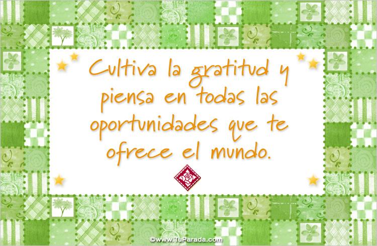 Tarjeta - Cultiva la gratitud y las oportunidades