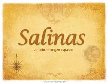 Origen y significado de Salinas