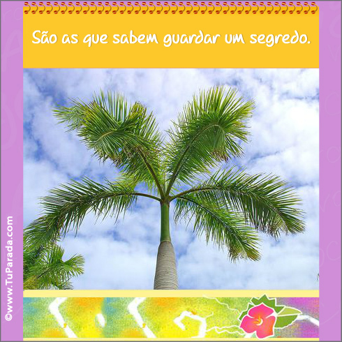 https://cardsimages.info-tuparada.com/2466/26658-2-envelope-surpresa-amizade-pag-3.jpg
