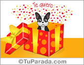 Tarjeta con regalo de perro blanco y negro: Te quiero.