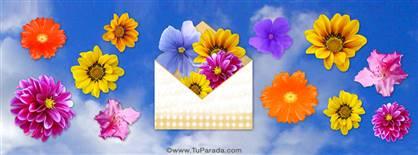 Imagen portada cielo y flores
