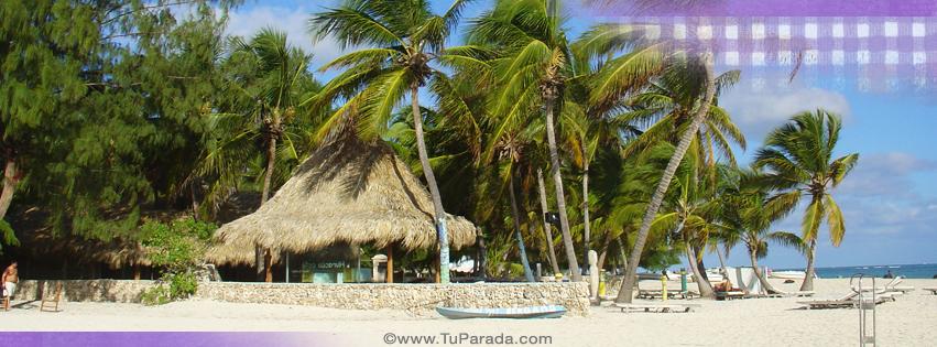 Foto playa y mar