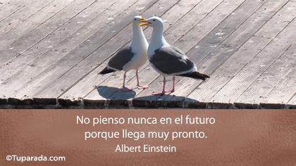 Tarjeta de Albert Einstein