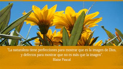 Tarjeta de Blaise Pascal