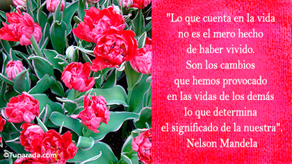 Tarjeta de Nelson Mandela
