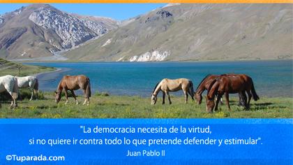 La democracia necesita...