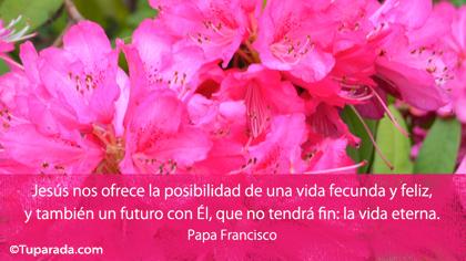 Tarjeta de Papa Francisco