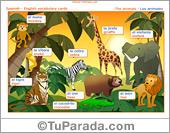 Vocabulario español - inglés: los animales, the animals.