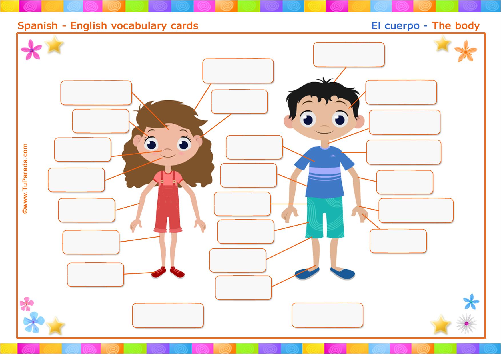 Vocabulario Cuerpo Body Imprimir Vocabulario Español