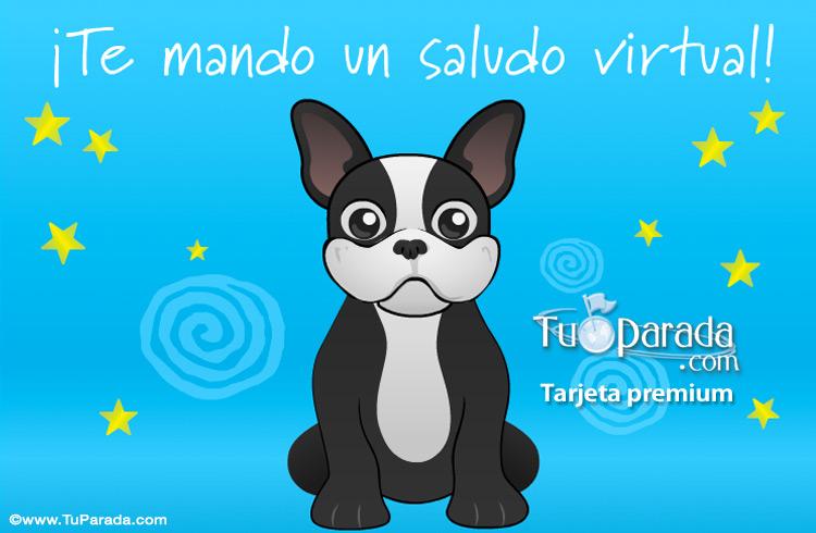 Tarjeta - Saludos con Mini Bulldog