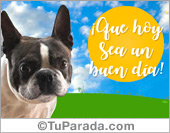 Tarjetas, postales: Tarjeta de saludos con perrito