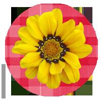 Imagen de flor amarilla