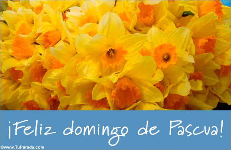 Tarjeta - Tarjeta de Pascua con flores amarillas