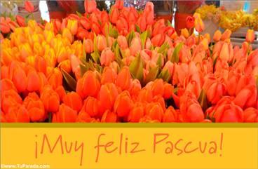 Tarjeta de tulipanes para Pascua