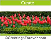 Create Flowers ecard