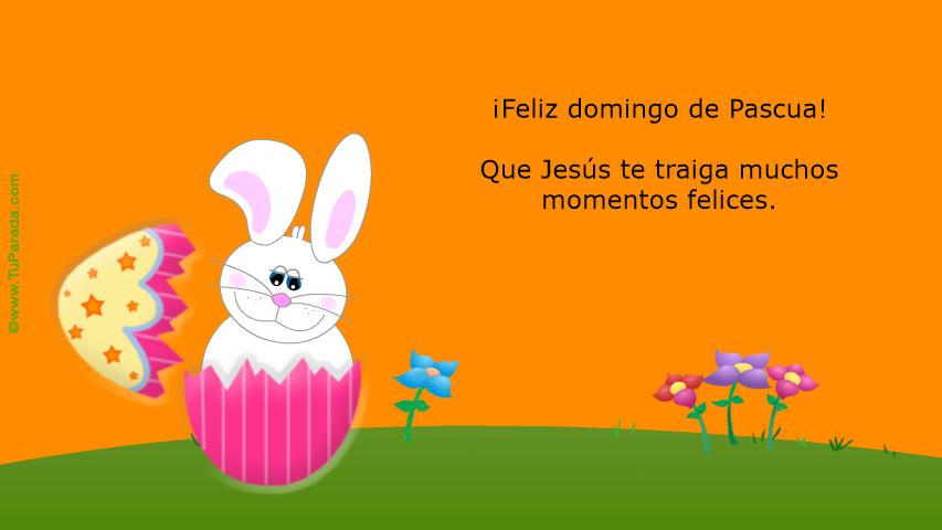 Conejito De Pascuas Pascua Tarjetas