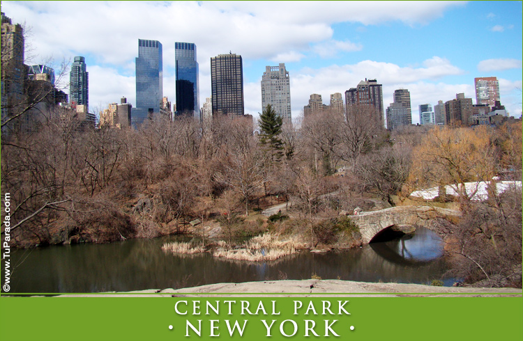 Tarjeta - Foto del Central Park - New York