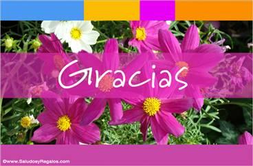 Tarjeta de gracias con flores