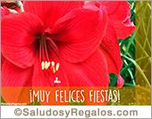 Felices fiestas con cálida flor