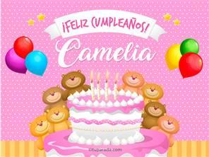 Tarjetas, postales: Camelia