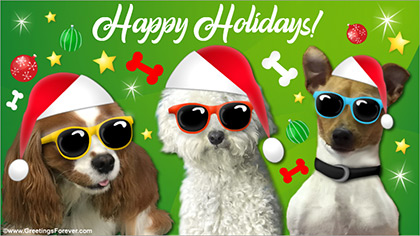 Christmas ecard with funny dogs