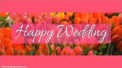 Happy Wedding for a great day